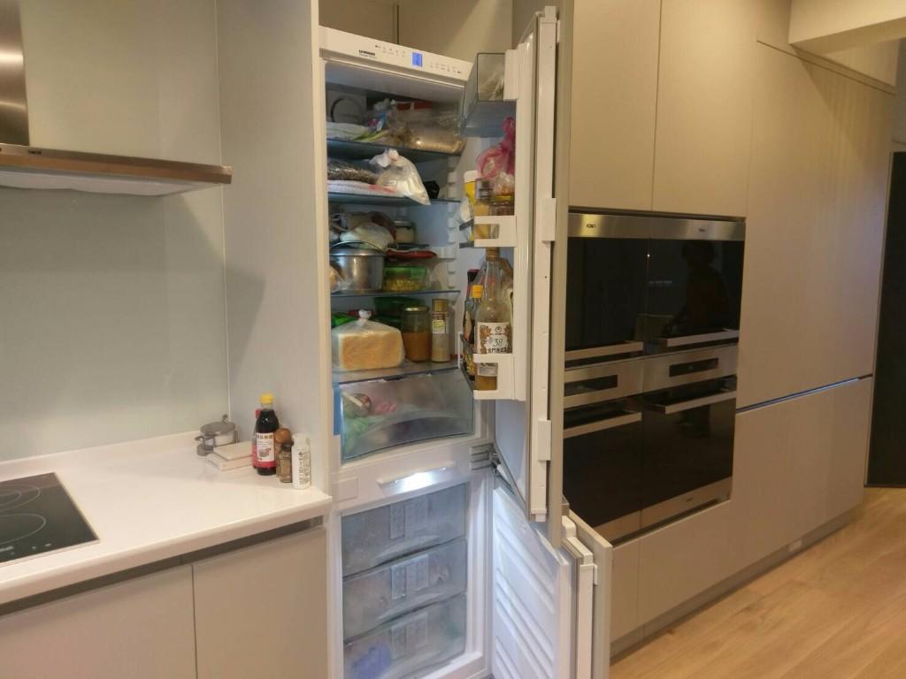 台北2016洪先生案例 隱藏式冰箱近照